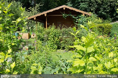 Cabane en bois : comment créer une pièce supplémentaire dans son jardin ?